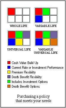 lifeinsurancematrix.JPG (37266 bytes)